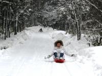 2009冬 そり遊び .jpg