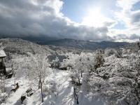 2010.2.3 雪景色 .jpg
