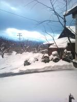 2011-01-31 16.55.11.jpg