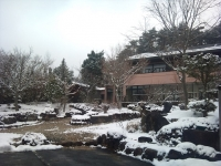 2011-03-11 14.02.09.jpg